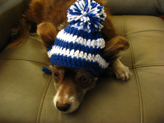 Crochet Pattern For Dog Hat Gallery Knitting Patterns Free Download
